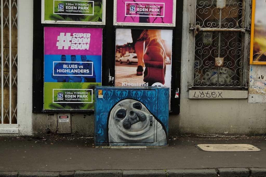 Graffiti Spotting New Zealand Seal Streetart